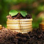 Рекомендации по защите прав на участки после открытия рынка земли