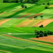 Для сельхозпроизводителей отчетный период по налогу на прибыль, как для всех