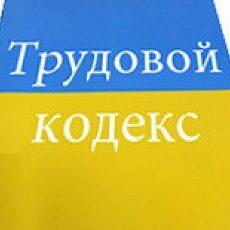 Комитет по вопросам соцполитики рекомендует принять в целом проект Трудового кодекса