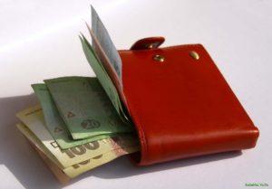 Гоструда внедрит спецмониторинг по зарплатным долгам