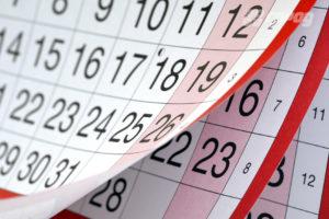 Графік роботи органів ДФС в святкові дні червня