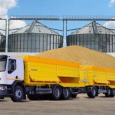 Потери зерна при транспортировке: как начислять НДС