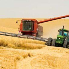 Що чекає фермерів як платників ЄСВ