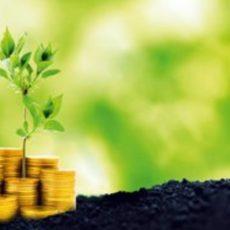 """Обновлены """"зеленые"""" тарифы на электрическую энергию для частных домохозяйств"""