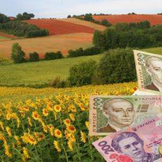 Условия государственной поддержки производителей сельскохозяйственной продукции меняет Парламент