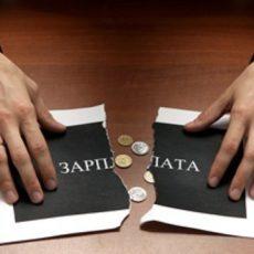 Как работнику самостоятельно проверить уплачивает ли работодатель страховые взносы за него (работает ли он официально)?