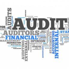 Президент подписал Закон об аудите финансовой отчетности и аудиторской деятельности