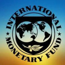 МВФ ожидает разделения ГФС на налоговую и таможенную службы уже в апреле
