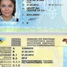 Можно восстановить онлайн потерянное водительское удостоверение