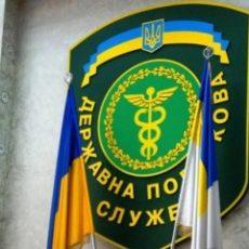ГНС требует подавать «пустые» приложения к объединенной отчетности по НДФЛ и ЕСВ